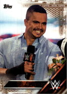2016 WWE (Topps) Then, Now, Forever Primo 134