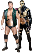 Cody rhodes and goldust titles