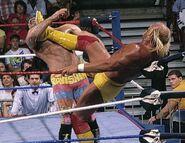 Royal Rumble 1990.4