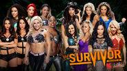 SS 2013 Divas Tag Match