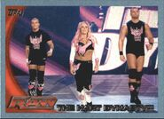 2010 WWE (Topps) Hart Dynasty 77