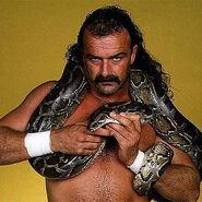 Jake-the-snake-roberts