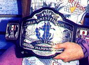 WWC Tag Team Champion (old)