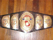 NWA Georgia Champion (old2)