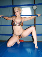Nikki Fierce - 3009300