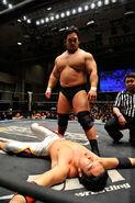 DDT Sweet Dreams 2015 2