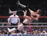 SummerSlam 1988-2