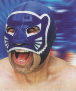 Blue Panther 9