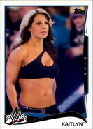 2014 WWE (Topps) Kaitlyn 78