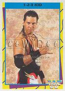 1995 WWF Wrestling Trading Cards (Merlin) 1-2-3 Kid 8