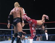 Survivor Series 1995..1