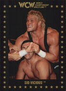 1991 WCW Collectible Trading Cards (Championship Marketing) Sid Vicious 13