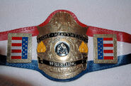 AWA Light Heavyweight Champion (old)
