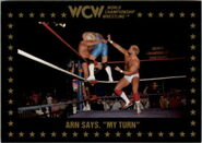 1991 WCW Collectible Trading Cards (Championship Marketing) Arn Anderson 59