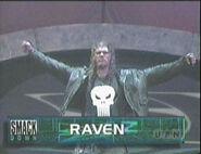 Raven 35