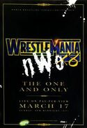 WM 18 poster