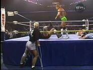 WrestleWar 1990.00048