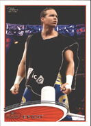 2012 WWE (Topps) Epico 15