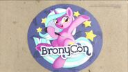 Brony Con - WWE Culture Shock (3)
