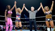 WWE World Tour 2014 - Newcastle.8