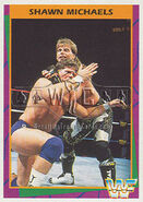1995 WWF Wrestling Trading Cards (Merlin) Shawn Michaels 158