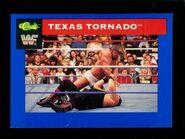 1991 WWF Classic Superstars Cards Texas Tornado 37