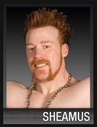 Sheamus20090901crawl