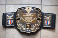 AWA World Champion 2