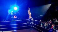 WWE World Tour 2015 - Liverpool 1