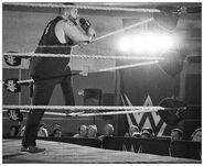 12-20-14 NXT 8