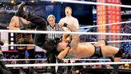 WrestleMania XXIX.7