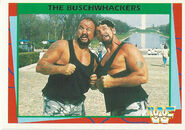 1995 WWF Wrestling Trading Cards (Merlin) Bushwhackers 108