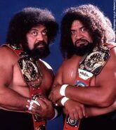 Wild Samoans.3
