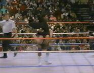 1.16.88 WWF Superstars.00019