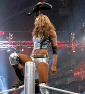 1st reign as divas champion