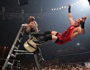 WrestleMania 22.9