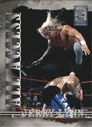 2002 WWF All Access (Fleer) Jerry Lynn 4