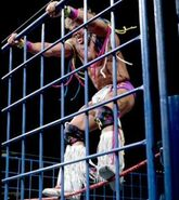 Steel Cage Images.10