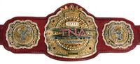 TNA Global