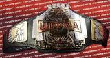 PWI Ultra J Championship