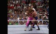 WrestleMania VIII.00016