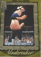 2002 WWF All Access (Fleer) Undertaker 100