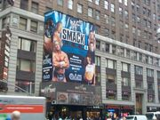 WWF New York