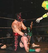 Ultramantis Black 5