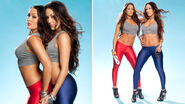 The-Bella-Twins-wwe-divas-29267633-686-384