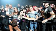 WWE WrestleMania Revenge Tour 2014 - Nottingham.9