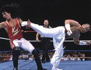 SummerSlam 1995.5