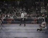 WWF The Wrestling Classic.00016