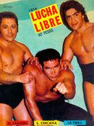 Lucha Libre 1016