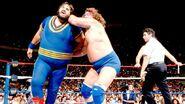 SummerSlam 1989-20